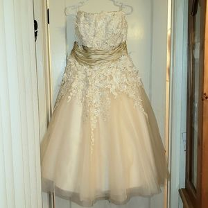 Ecru cream lace tulle strapless wedding gown 22